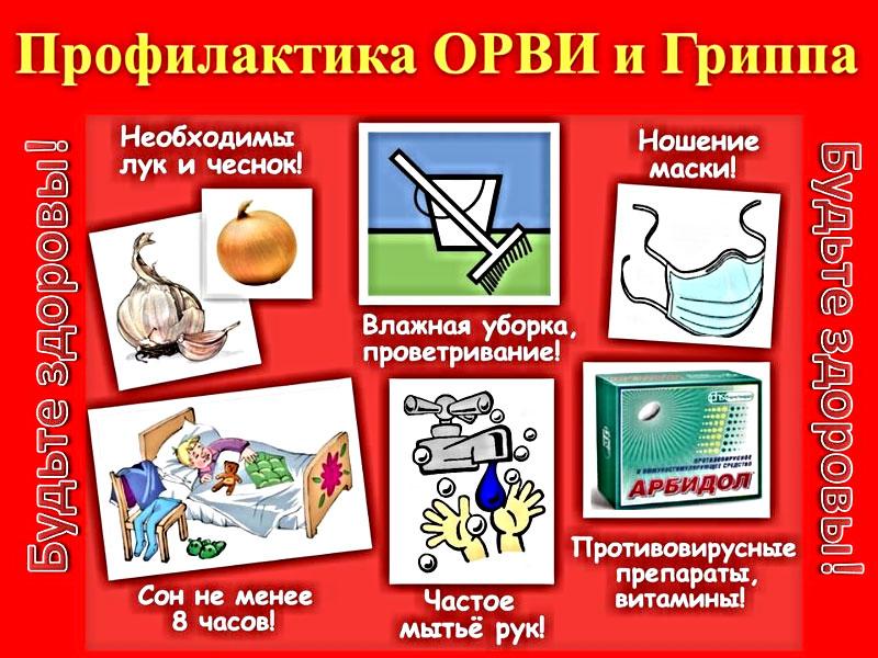 Организация вакцинации против гриппа и ОРВИ